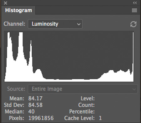 Wide Dynamic Range Histogram